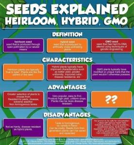 Hybrid List
